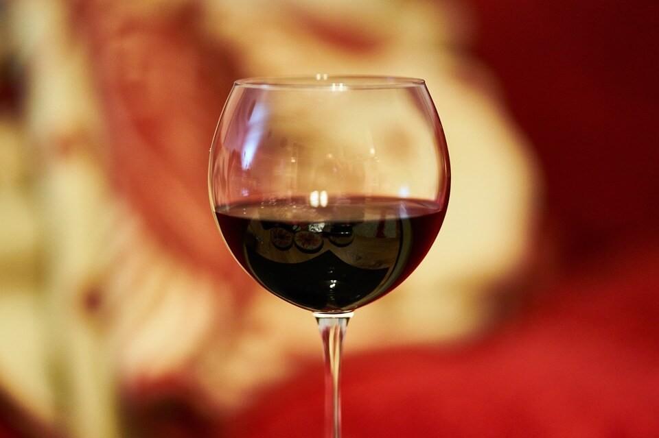 benefício vinho para saúde